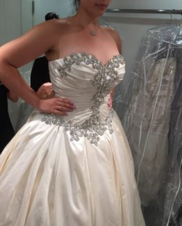 Inexpensive plus size wedding gowns with crystal beading from Darius Bridal