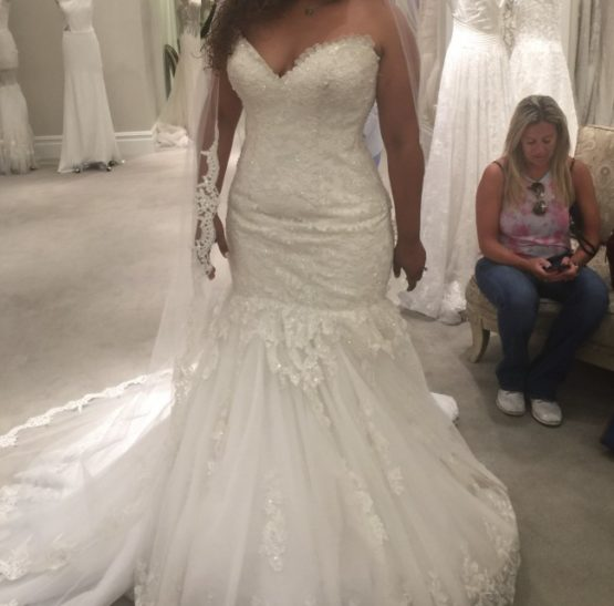 Plus size beaded lace wedding gowns from the Darius Collection